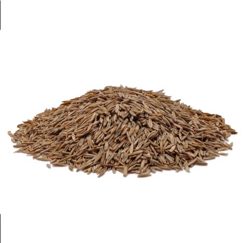Semilla de c sped mustang kg jard n la cobacha - Semillas de cesped para jardin ...